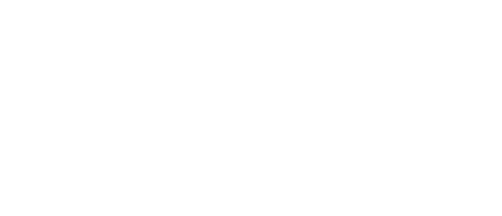 super recognisers international logo